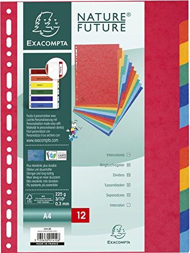 Exacompta 1412E Packung mit Register, robust aus Colorspan-Karton fest 225g/m², für DIN A4, mit 12 Taben und Indexseite, 1 Pack, farbig sortiert