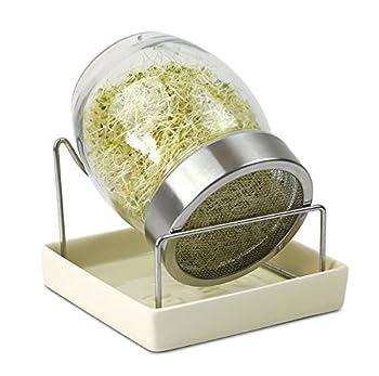 Excellent rapport qualité prix Pot en verre Base de collecte de l'eau en céramique Bouchon et grillage en acier Mode d'emploi inclus sur la manière de faire germer les graines