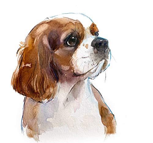 AQjept DIY Pintar por números Retrato de Mascota Kits de Pintura por números con Pinceles y Pigmento acrílico Pintura de Bricolaje en Lienzo para niños Adultos Principiantes