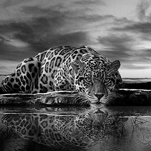 FORWALL Fototapete Vlies - Tapete Moderne Wanddeko Jaguar in schwarz und weiß VEXXXL (416cm. x 254cm.) AMF218VEXXXL Wandtapete Design Tapete Wohnzimmer Schlafzimmer