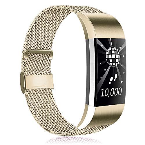 Amzpas Kompatible Für Fitbit Charge 2 Armband, Metall Magnetverschluss Edelstahl Ersatzarmband für Fitbit Charge 2 (05 Champagner, S)