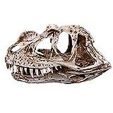 VOANZO - Réplica de calavera de dragón nasal, diseño de calavera de dinosaurio, fósil de calavera de diente de dinosaurio, utilería de fotografía, herramienta de enseñanza para el hogar
