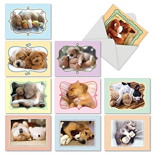 The Best Card Company - 10 Blank Dog Greeting Cards for All Occasions (4 x 5.12 Inch) - Cuddle Buddies M6469OCB