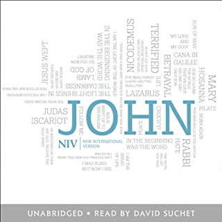 NIV Gospel of John cover art