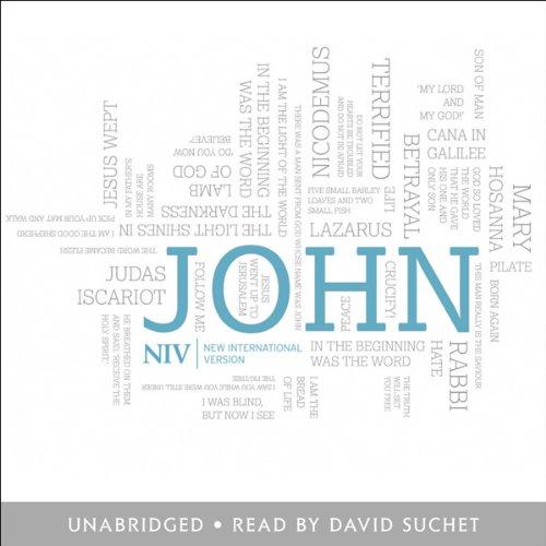 NIV Gospel of John cover art