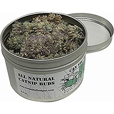 From The Field Can You Resist Catnip Buds, 0.4-Ounce