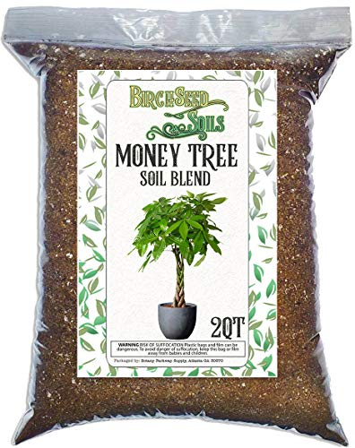 Money Tree Soil Blend All Natural Soil Mixture Formulated for Repotting and Planting Money Tree Plants 2 Quart Sized Bag