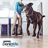Purina DentaLife Maxi Tägliche Zahnpflege-Snacks für große Hunde, 5er Pack (5 x 142 g) - 4