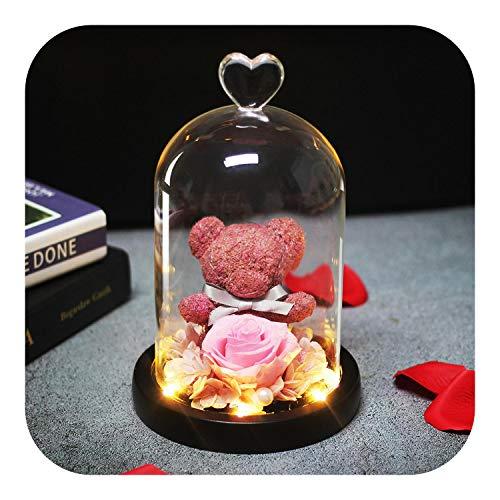 star-xing Rosenbär mit Geschenkbox HEISS Bär Rose Schönheit und das Biest Kaninchen Blumendekor in Einer Glaskuppel für Hochzeit mit Led Muttertag-pink-,