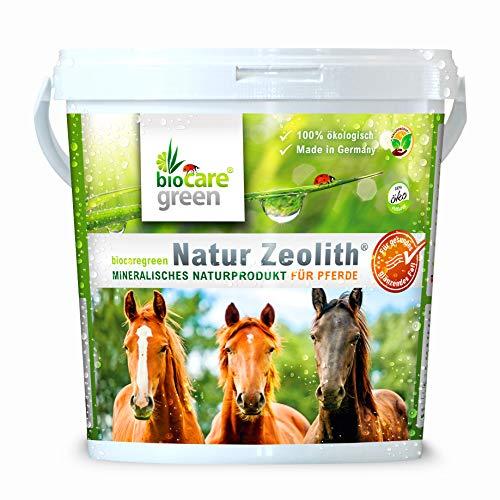 biocaregreen Natur Zeolith Pferd | 1kg, Garantierte Vermahlung auf 50 μm | Nahrungsergänzung für Pferde