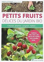 Petits fruits, délices du jardin bio