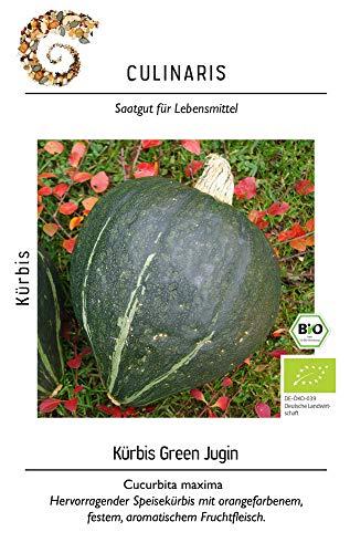 Culinaris 057 Kürbis Green Jugin (Bio-Kürbissamen)