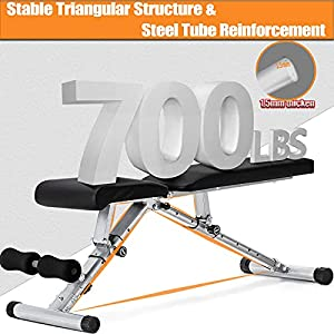 Adjustable Weight Bench, CheerTran 700LBS Workout Benches for Home Gym - Multi-Purpose Foldable Flat Incline Decline Strength Training Exercise Bench
