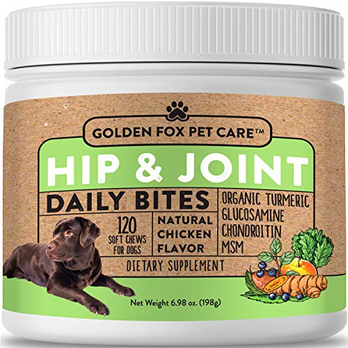 Hip & Joint Supplement for Dogs - Organic Turmeric  Glucosamine  Chondroitin  MSM - Made with All-Natural Ingredients - Supports Healthy Joints & Improves Mobility  Large & Small Dogs - 120 Soft Chews