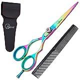 Best Hair Scissors - Sane Professional Hairdressing Scissors 6.5'' Titanium Coated Hair Review