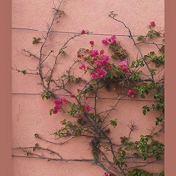 Flowers .WAV