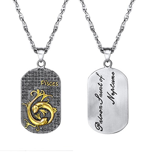PROSTEEL Horoscope Necklace Pisces Dog Tags 12 Zodiac Sign Constellation Pendant with Stainless Steel Chain