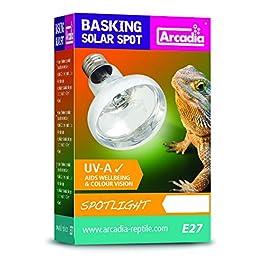 Arcadia Reptile Basking Solar Spot Lamp