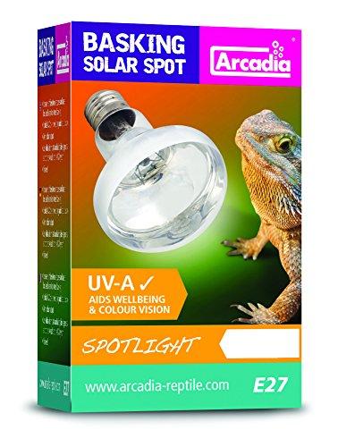 Arcadia SBS75 Basking Solar Lampe UVA Spotlight