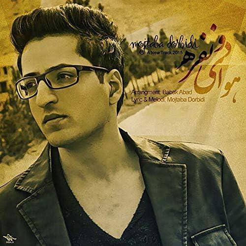 Mojtaba Dorbidi