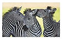 野生動物のドアマット アフリカのサファリをテーマにしたシマウマ 野生の自然スタイル クローズアップ ピクチャープリント 装飾的なポリエステルフロアマット 40x60 cm
