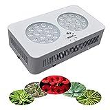 LED-Pflanzenlampe Floris 90 Vollspektrum für alle Zimmerpflanzen wie z.B. Kakteen, Palmen, Yucca, Bonsai, Euphorbien