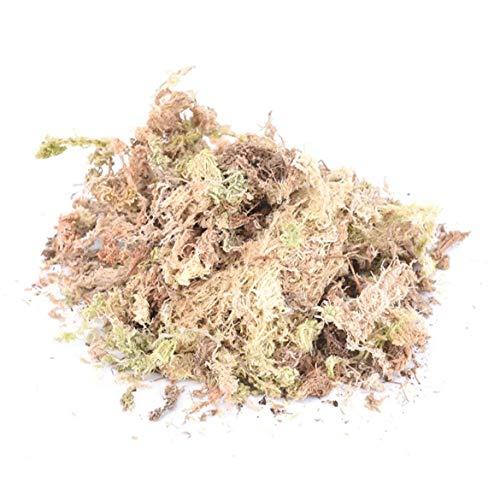 1pack 12l Sphagnum Dry Moss Garden Moisturizing Ernährung Bio-dünger Für Orchideephalaenopsis Musgo Sphagnum Nützliche