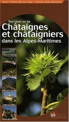 Tout Savoir Sur les Chataignes et Chataigniers Dans les Alpes-Maritimes