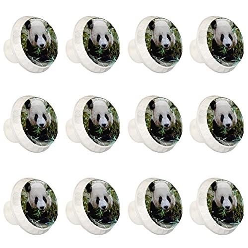 Pomos para cajones de Panda Animal para gabinetes de cocina, tiradores de cajones de 1,37 pulgadas (12 unidades)