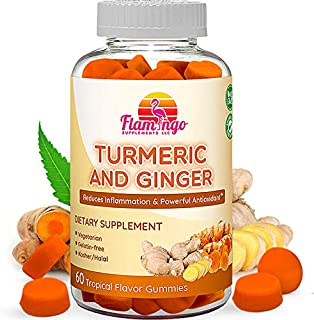 Turmeric Curcumin & Ginger Chewable Gummies for Adults and Children. Anti Inflammatory Supplement for Joint Relief. Vegan ...