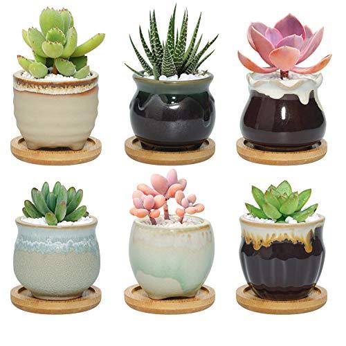 T4U 6CM Mini Pot de Succulente avec Plateau Bambou Lot de 6, Cactus Plante Planteur de Céramique Petite Cache Pot Jardinière Contenant Décoration de Maison Bureau Cadeau Anniversaire
