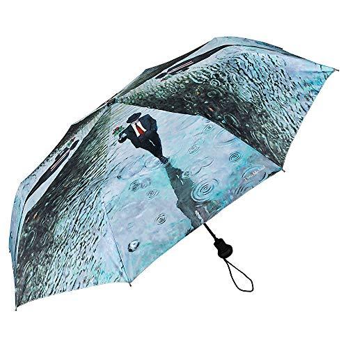 VON LILIENFELD Regenschirm Taschenschirm Automatik Leicht Stabil Damen Kunst Motiv Theo Michael: Romance