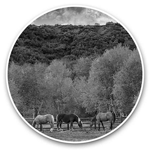 Impresionantes pegatinas de vinilo (juego de 2) 30 cm BW – Árbol del bosque otoñal hojas divertidas calcomanías para portátiles, tabletas, equipaje, reserva de chatarras, neveras, regalo fresco #39730