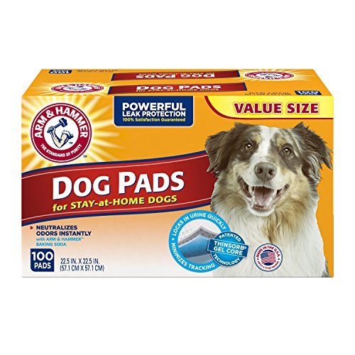 Arm and Hammer Dog Training Pad