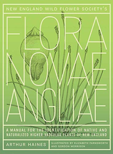 New England Wild Flower Society's Flora Novae Angliae: A Manual for the Identification of Native and Naturalized Higher