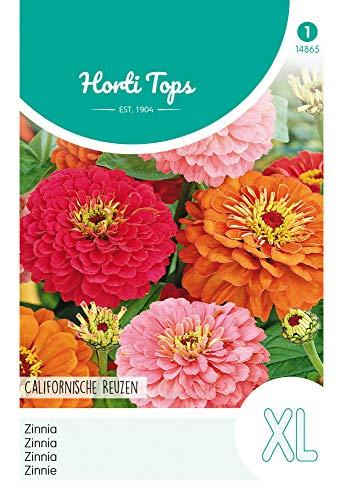 Hortitops 14865 Zinnie Kalifornische Riesen Mischung (Blumensamen)