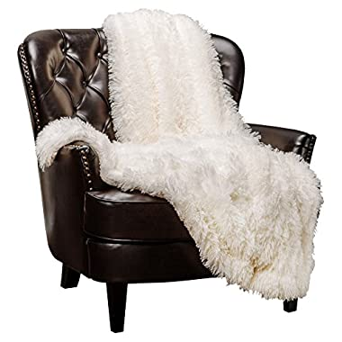 Chanasya Super Soft Shaggy Longfur Throw Blanket | Snuggly Fuzzy Faux Fur Lightweight Warm Elegant Cozy Plush Sherpa Microfiber Blanket | For Couch Bed Chair Photo Props - 60 x 70  - Ivory White