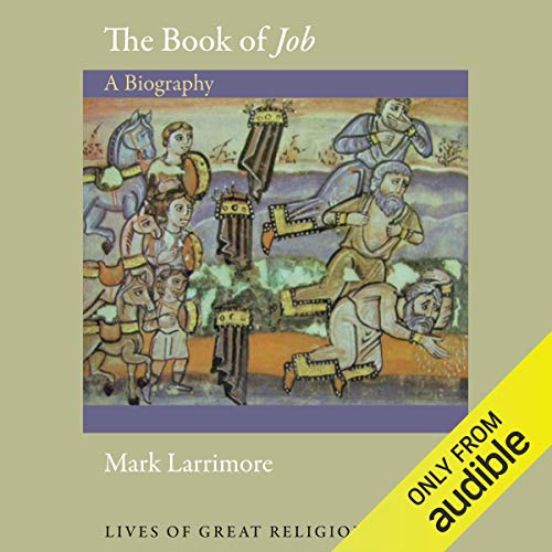 The Book of Job Audiobook By Mark Larrimore cover art