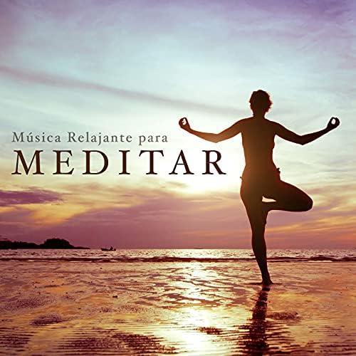 Healing Therapy Music, Meditación Maestro & First Genesis