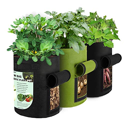 ANGELIOX 3 Pack Potato Grow Bags, 400G Heavy Duty Planting Fabric Pots with Handles and Flap, Thickened Garden Bags for Vegetables,Tomatoes,Carrots,Onions(Black+ Green-7 Gallon)