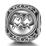 NINAQUEEN Charm para Pandora Charms Acuario 12 Constelación Signo Zodiaco Regalo Mujer Originales Plata 925 Cumpleaños para Esposa Novia Mamá