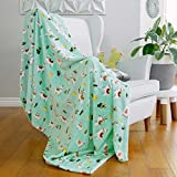 AVAFORT Velvet Plush Home Fleece Throw Blanket for Couch Sofa Bed, Warm Elegant Fuzzy Flannel Blanket for Kid Baby Adults or Pet, Lightweight Soft Cozy Warm Luxury Microfiber Blankets (Llama-Aqua Sky)