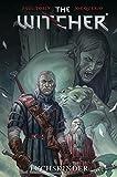 The Witcher: Bd. 2: Fuchskinder