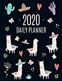 Llama Planner 2020: Cute 2020 Alpaca & Cactus Daily Organizer | January - December (with Monthly Spread) | For School, Work, Meetings, Goals & ... Pink Weekly Scheduler (Year Planners 2020)