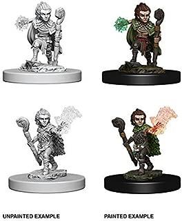 Pathfinder Deep Cuts - Gnome Male Druid