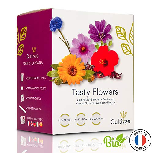 Cultivea Mini - Klaar om te groeien Kit eetbare bloemen - 100% biologische zaden - Tuin en genieten - Gift (Calendula, Korenbloem, Malva, Kosmos, Hibiscus) (Tasty Flowers)