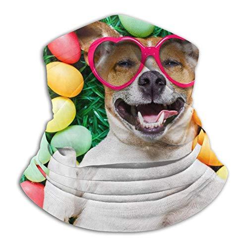 XCNGG Hund, Liegen, Ostereier, Sonnenbrille Gesichtsschal Hals Gamaschenschal Bandana...