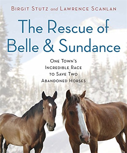 Image of The Rescue of Belle and Sundance: One Town's Incredible Race to Save Two Abandoned Horses (A Merloyd Lawrence Book)
