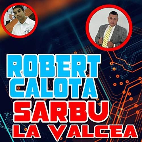 Robert Calota, Sarbu de la Valcea
