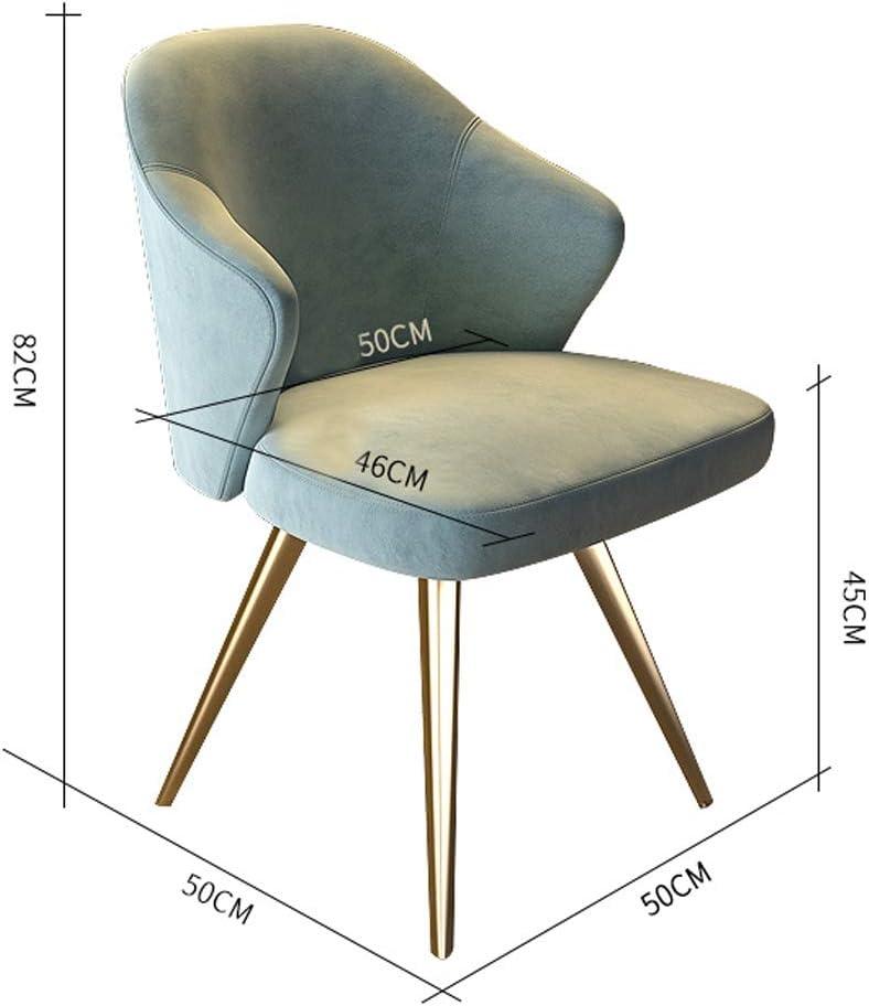 WDX-Chaise de Salle à Manger, Simple Chaise de Bureau, Dossier créatif, Chaise de Loisirs, Maison Adulte Chaise de Salle à Manger Mode Bleu Clair